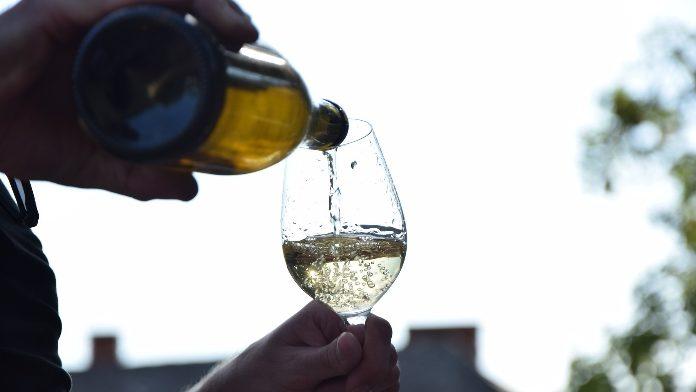 Vladimir Golovin su alcolismo - Forum di alcolizzato consorella